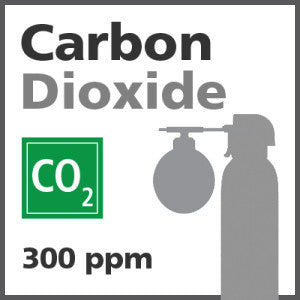 Carbon Dioxide Bump Test Gas - 300 PPM (CO2)
