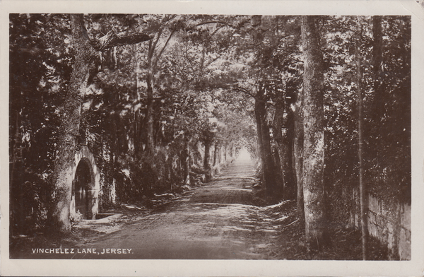 74275 - JERSEY. 1908 post card of Vinchelez Lane, Jersey t...