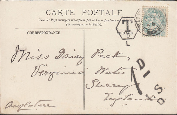 86162 - 1901 UNDERPAID MAIL FRANCE TO SURREY.