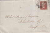 91450 - PL.9 IN RED (CI)(SG7 ON COVER)/DUNDEE MALTESE CROS...