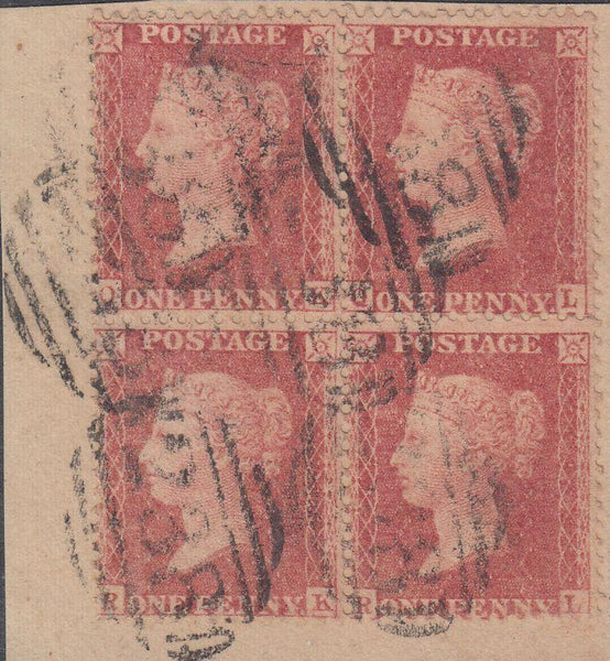 96002 - PL.60 (QKQLRKRL)(SG40). Small piece with fine u...