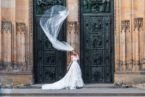 Statement Wedding Veil