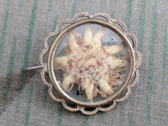 Vintage German Edelweiss Flower Brooch