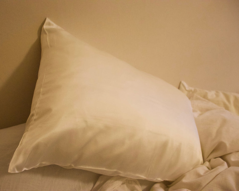 Organic Silk Pillow