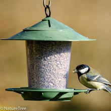 Load image into Gallery viewer, Eco Beacon Bird Feeder - NatureTree