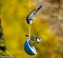Load image into Gallery viewer, Bird Cake Feeder Kit - NatureTree