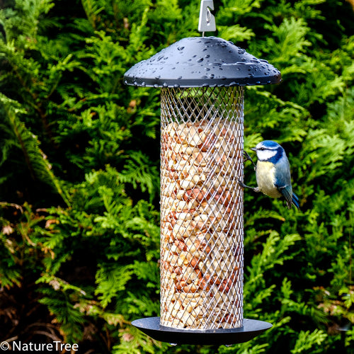 The Diamond Peanut and Sunflower Seed Feeder - NatureTree
