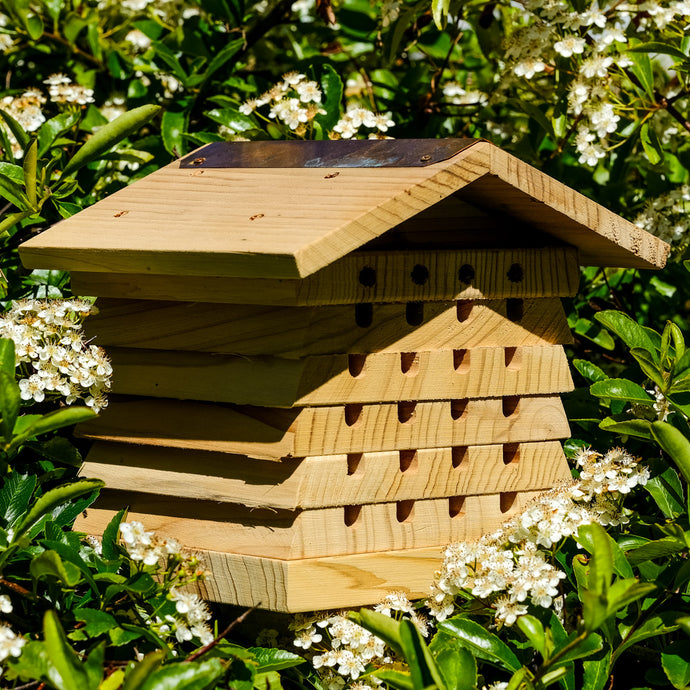 Solitary Bee Hive - With Free Bee Guide While Stocks Last - NatureTree