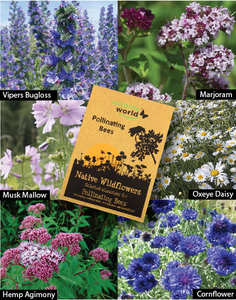 Native Wildflower Seeds For Pollinating Bees - NatureTree