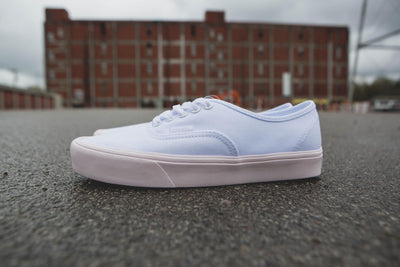 VANS - UA AUTHENTIC LITE