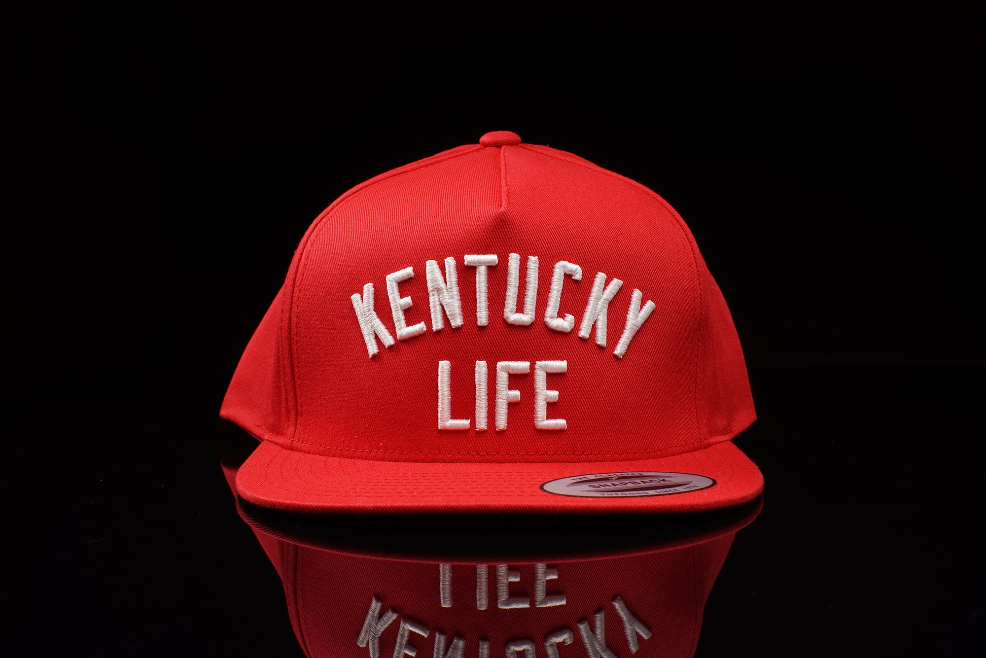 Diamond Supply CO x Oneness Kentucky Life 'Rivalry' Snapback