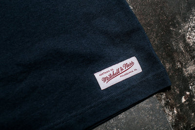 MITCHELL & NESS GREY FLOCK TRADITIONAL TEE