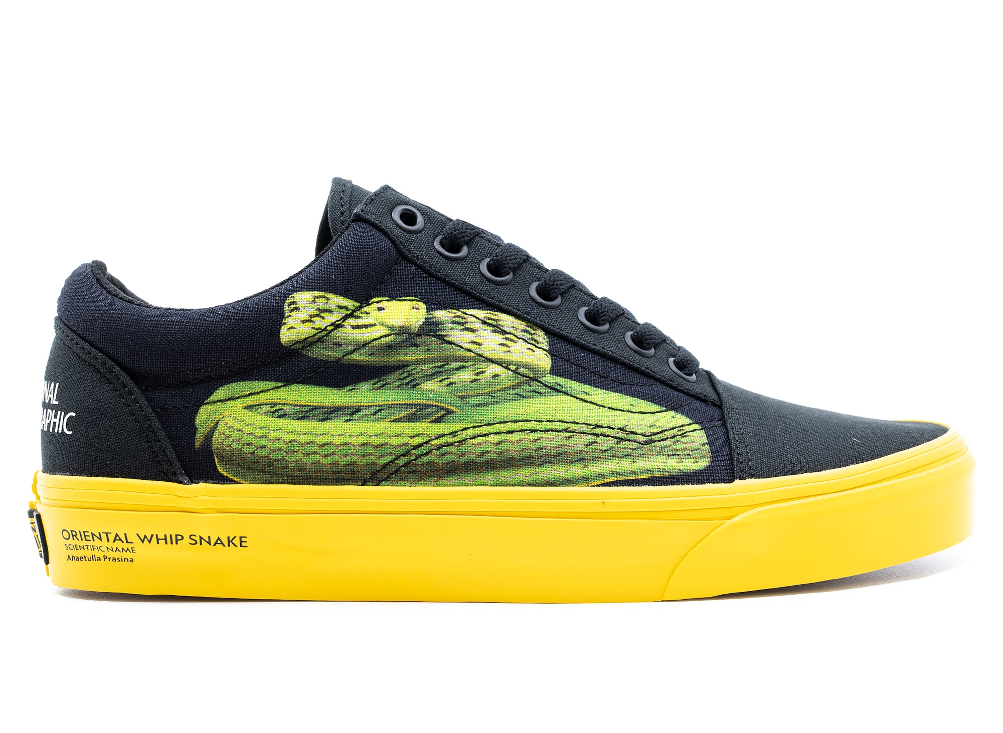Vans Old Skool 'National Geographic' xld