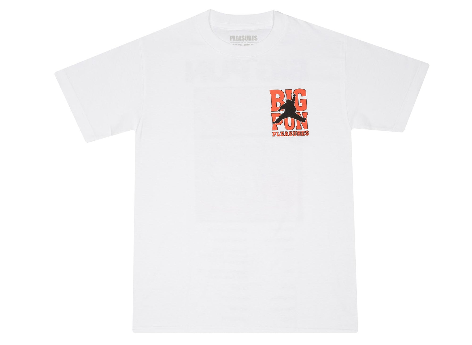 PLEASURES x BIG PUNISHER STATS TEE