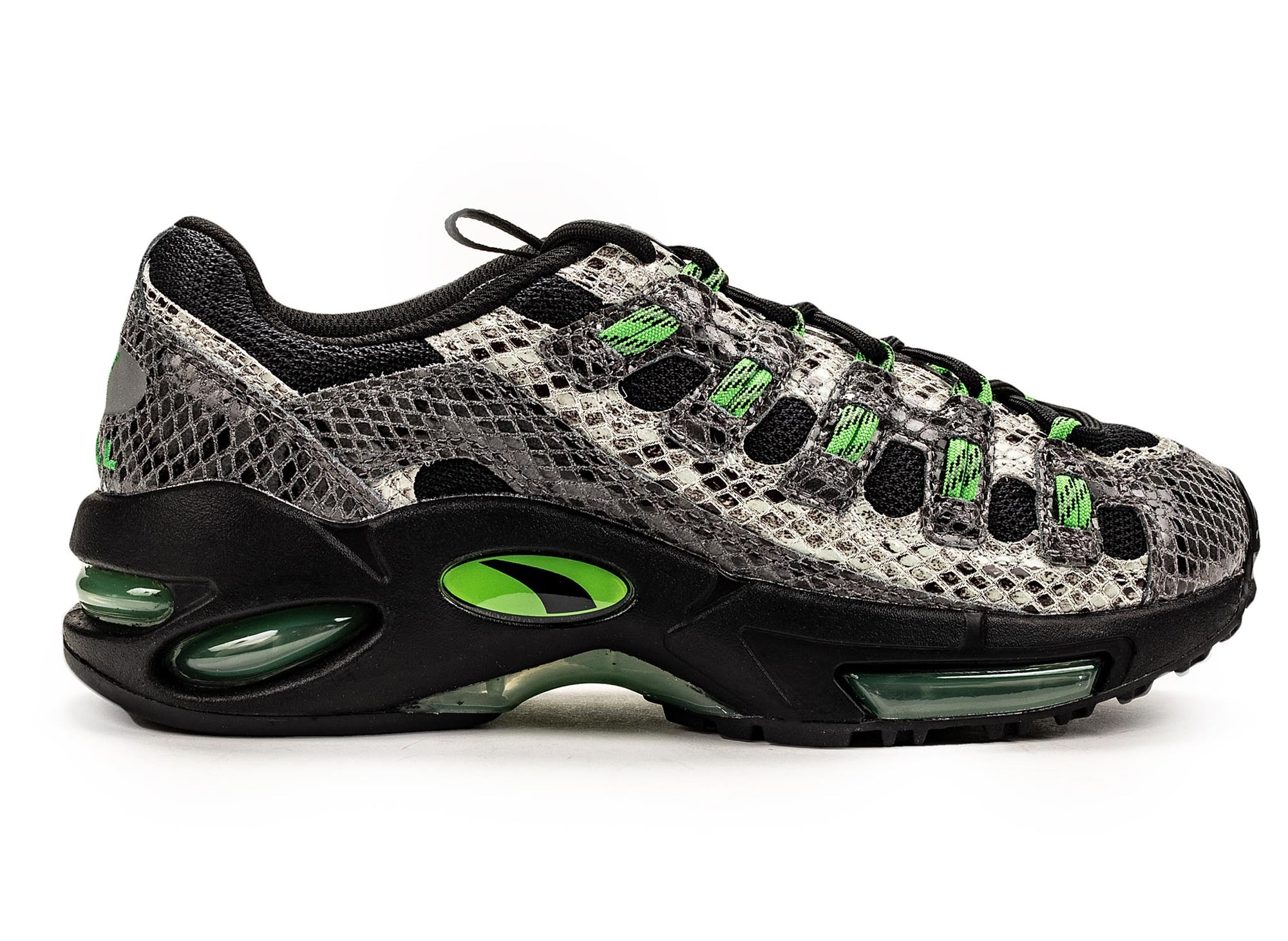 PUMA cell endura animal kingdom