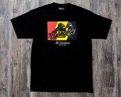 THE HUNDREDS WILDFIRE X T SHIRT (BLK)
