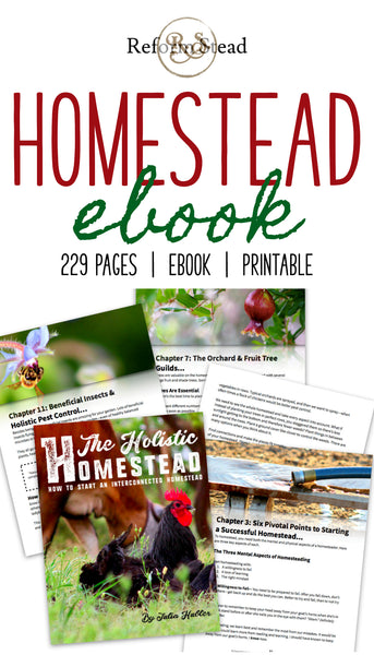 The Holistic Homestead: How to Start an Interconnected Homestead —  eBook