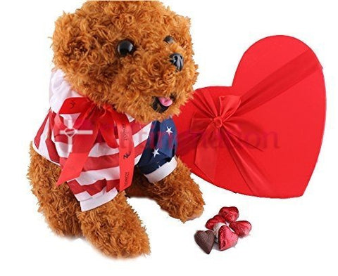 12 inch Dog cuddly with a heart box of 27 milk chocolate hearts - Giftingnation