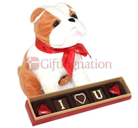Puppy Love Chocolate Gift Box - Giftingnation