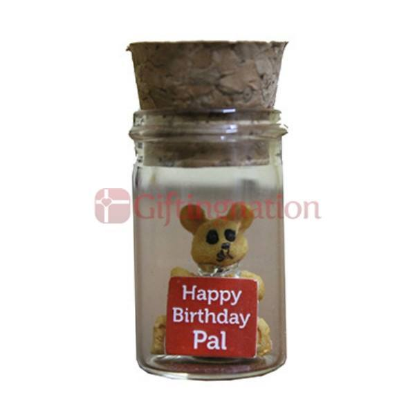 Birthday Gift for Friend Sentiments in a Bottle - Giftingnation