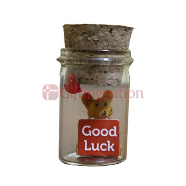 Good Luck Gift Sentiments in a Bottle - Giftingnation