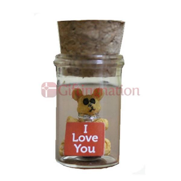 I Love You Gift Sentiments In A Bottle - Giftingnation