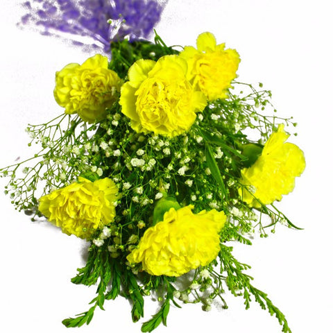 Six Yellow Carnations Bunch