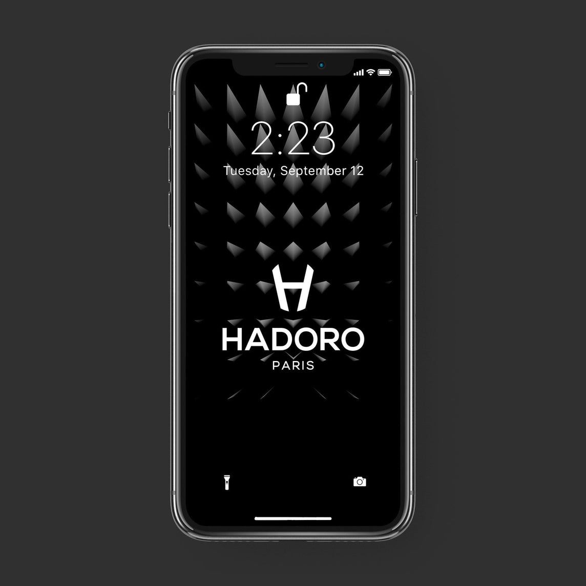 Hadoro iPhone Xs Signature | Alligator | Stainless Steel | Red