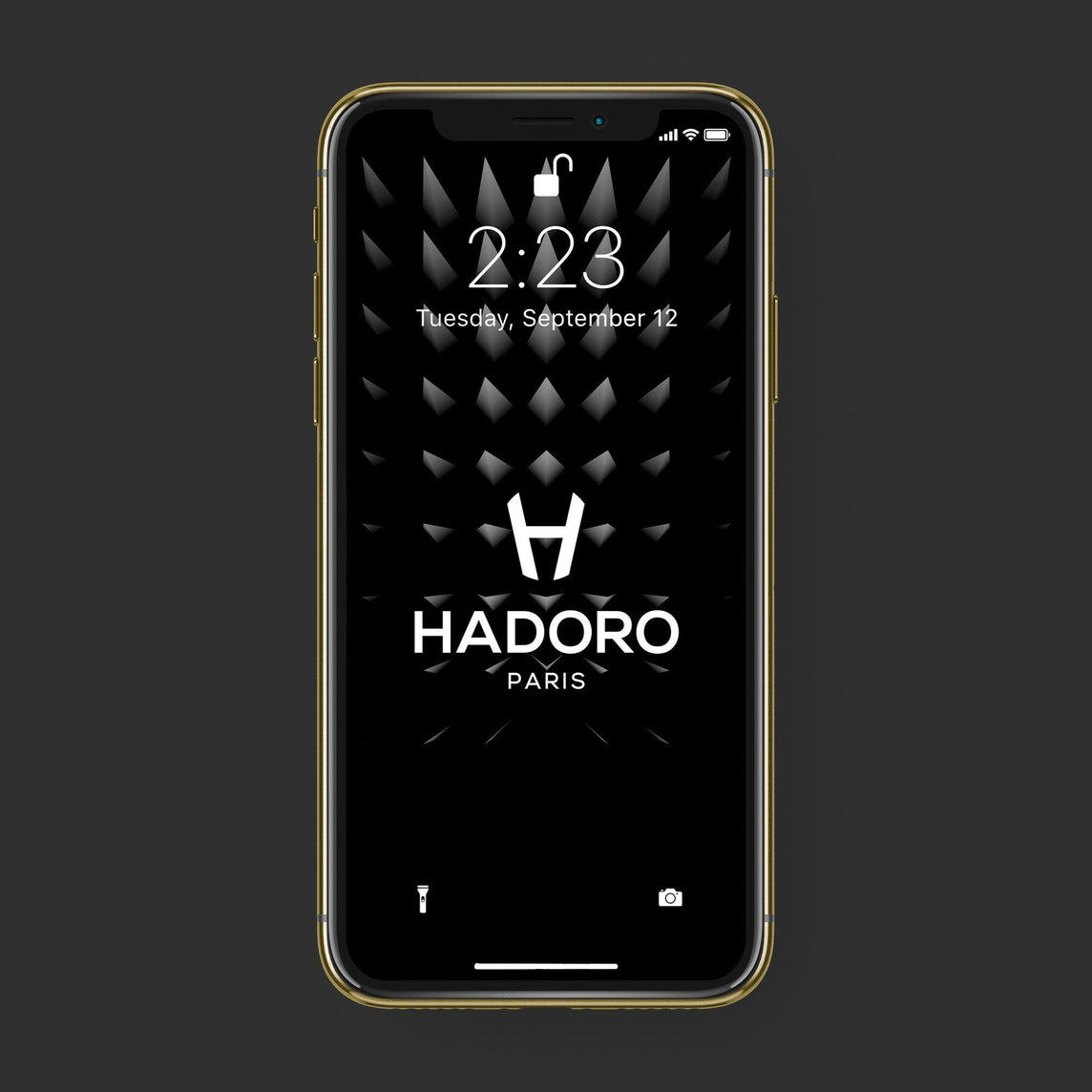 Hadoro iPhone Xs Signature | Alligator | Gold — Green with-phone