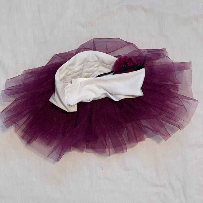 Photo tutu with head band bow came off Size one size