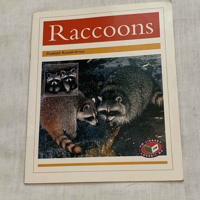 All about Racoons