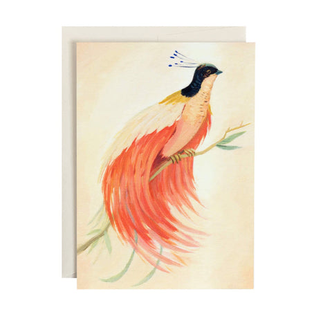 Bird Of Paradise Single Card