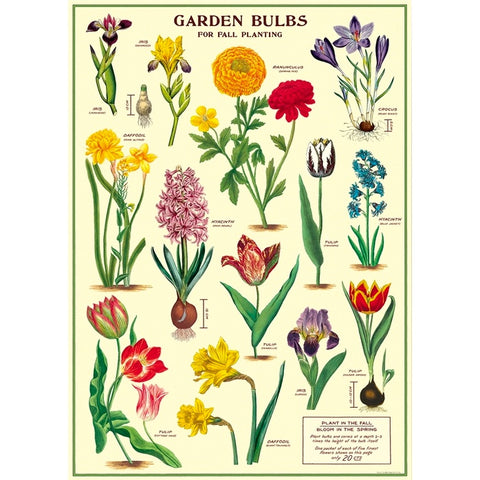 Garden Bulbs Poster Wrap