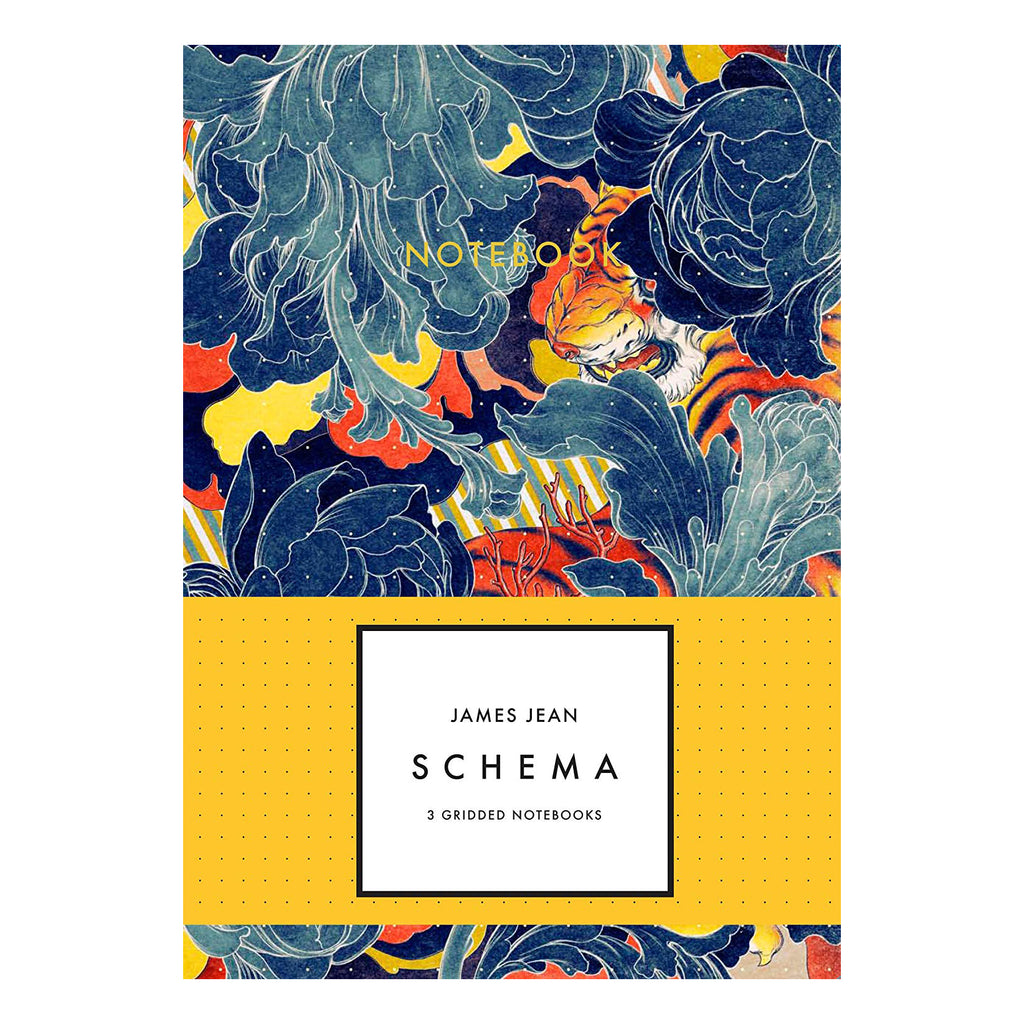 James Jean: Schema Notebook Set