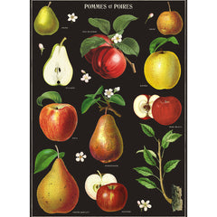 Apples & Pears Poster Wrap