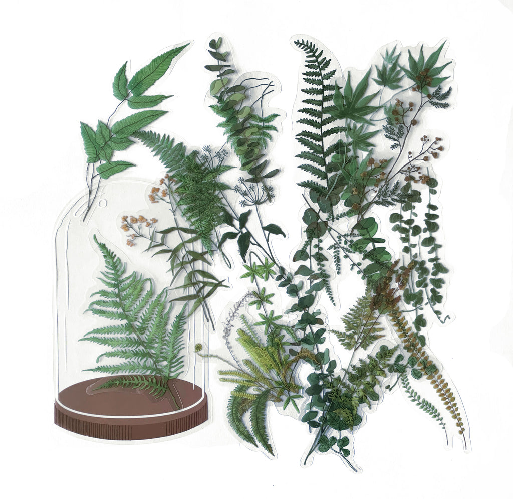Ferns Clear Sticker Set