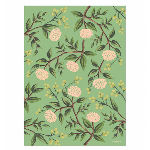 Rifle Paper Co. Emerald Peonies Wrapping Sheets, Roll of 3