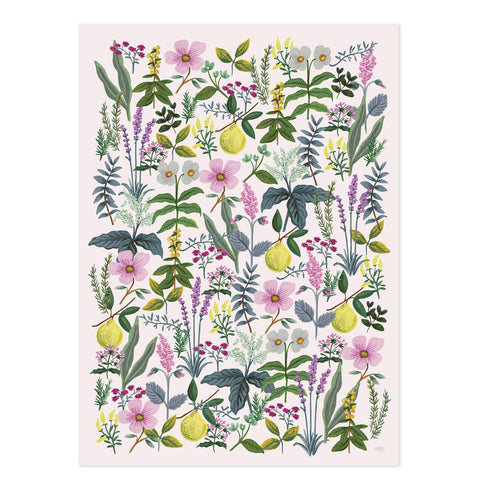 Rifle Paper Co. Herb Garden Wrapping Sheets, Roll of 3