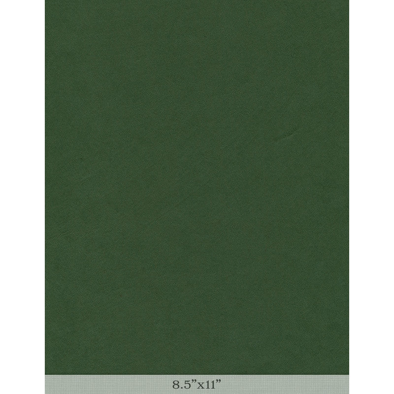Moriki Kozo Forest Green - Sample 8.5