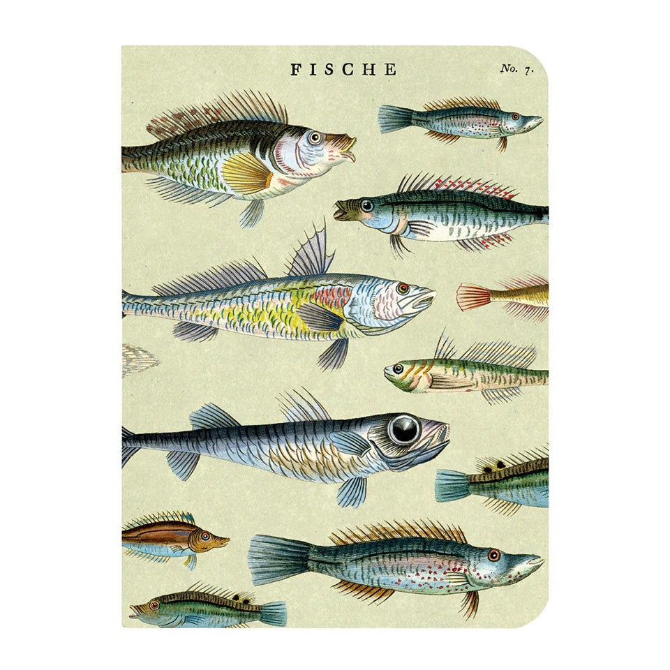 Cavallini Mini Sea Life Notebook Set/3