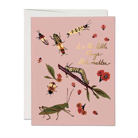 Little Bugs Single Card