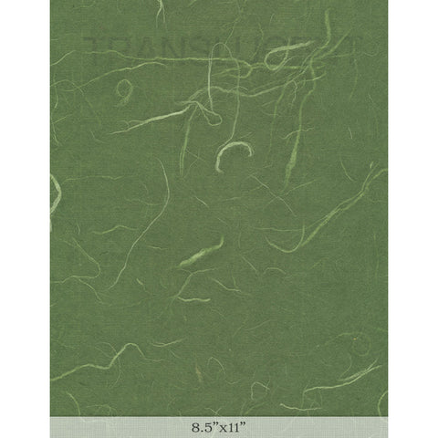 "Silk Dark Green - Sample 8.5"" x 11"""