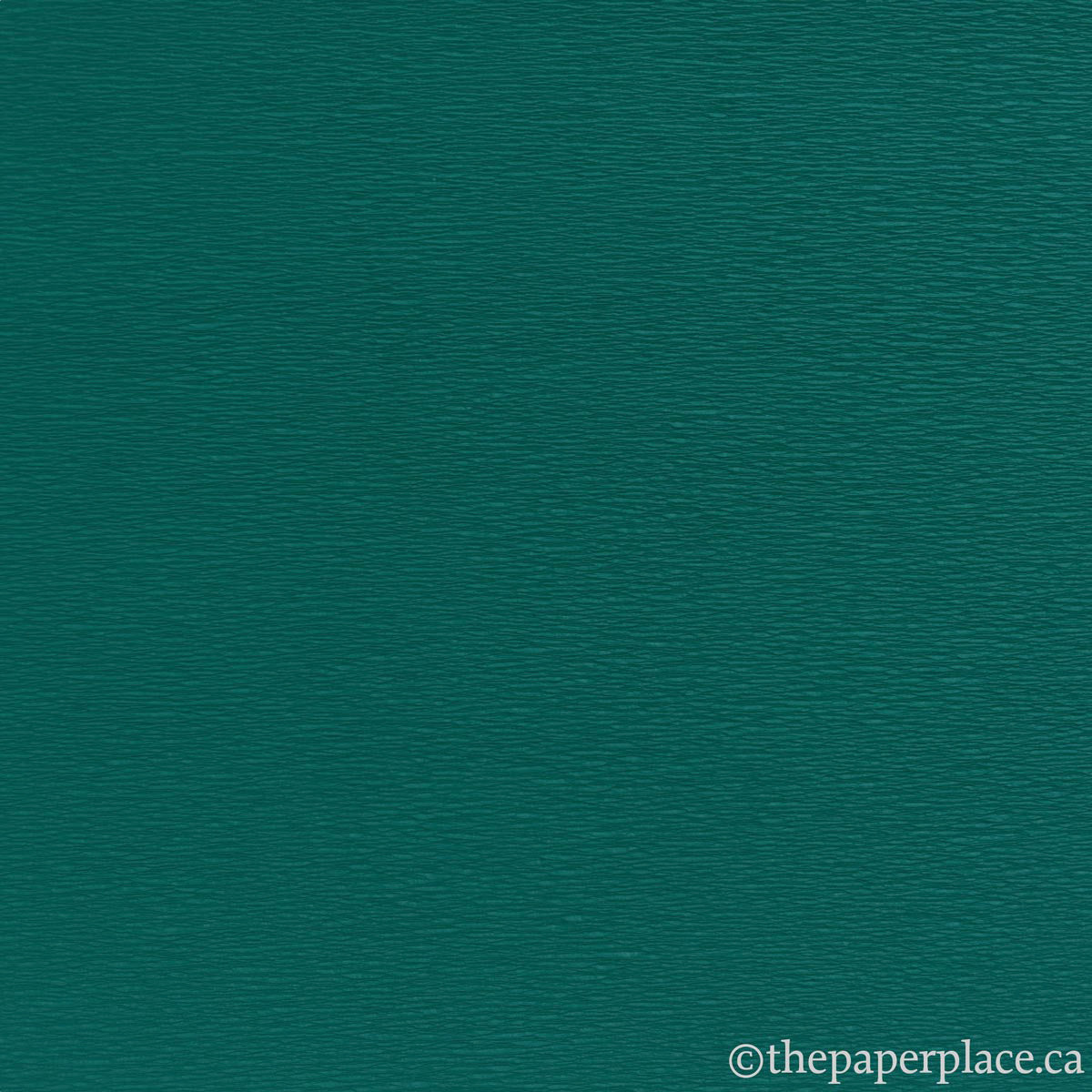 Single-Sided Crepe - Forest Green