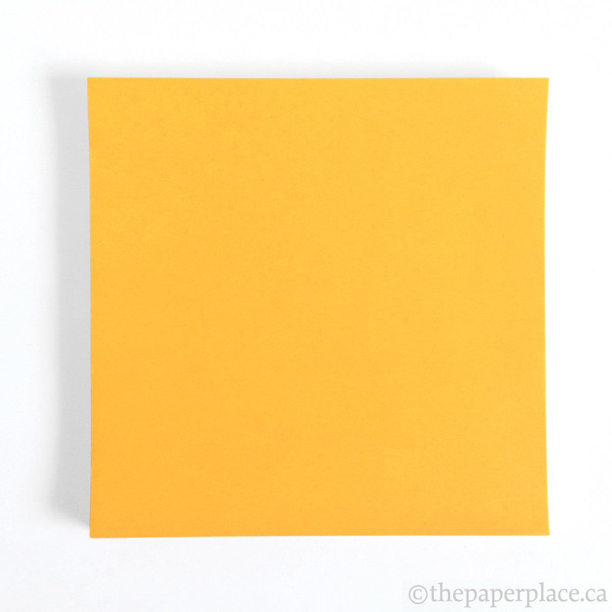 15cm Single Colour Dark Yellow - 100 Sheets