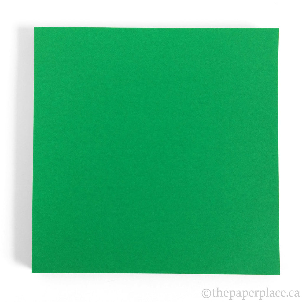 15cm Single Colour Green - 100 Sheets