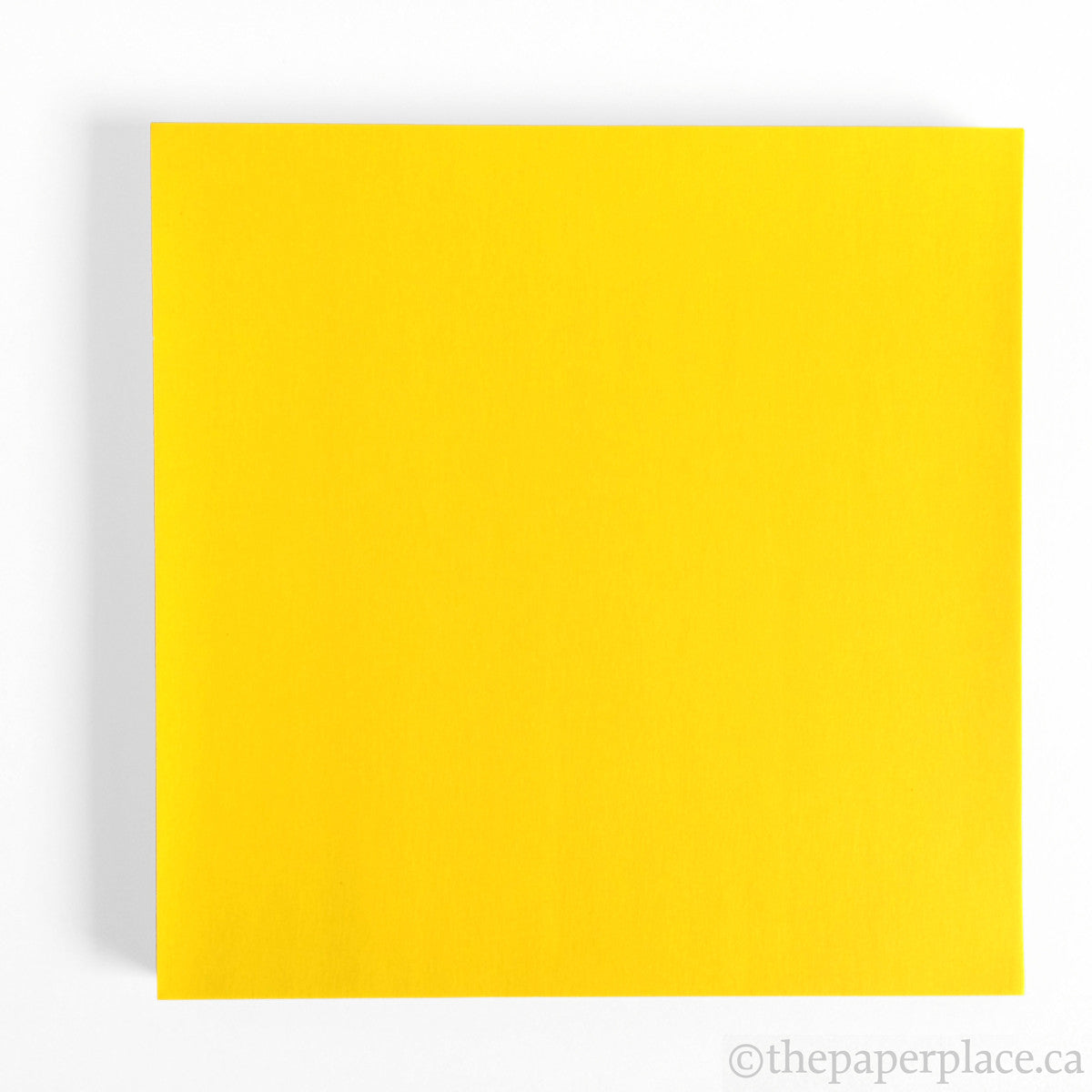 15cm Single Colour Lemon - 100 Sheets