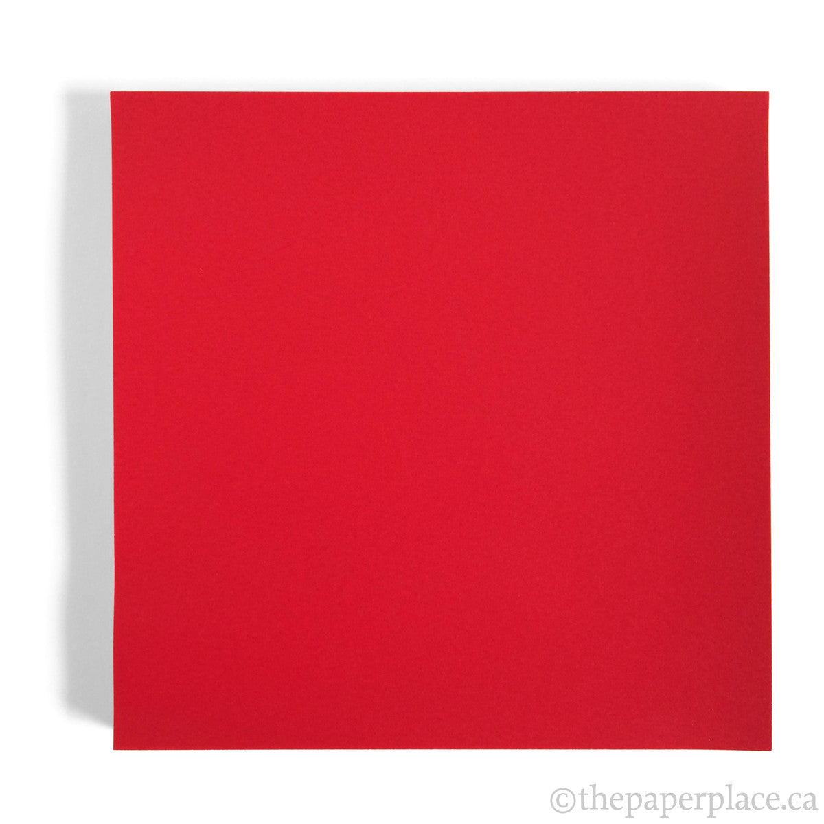15cm Single Colour Rose Red - 100 Sheets