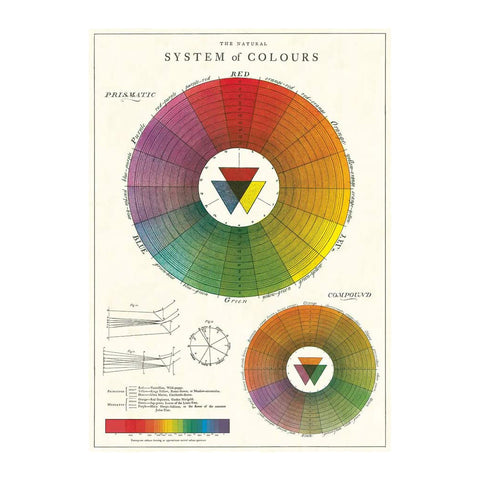 Colour Wheel Single Card