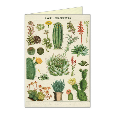 Cacti & Succulents Single Card