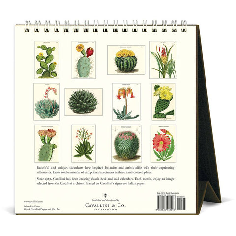 2019 Succulents Desk Calendar